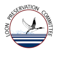 Loon Preservation Committee - Moultonborough, NH