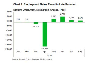 Financial News: Employement Gains Eased in Late Summer